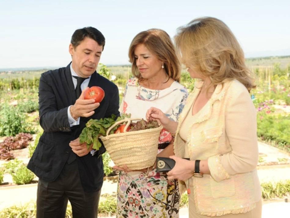 Ana Botella privatizando un tomate