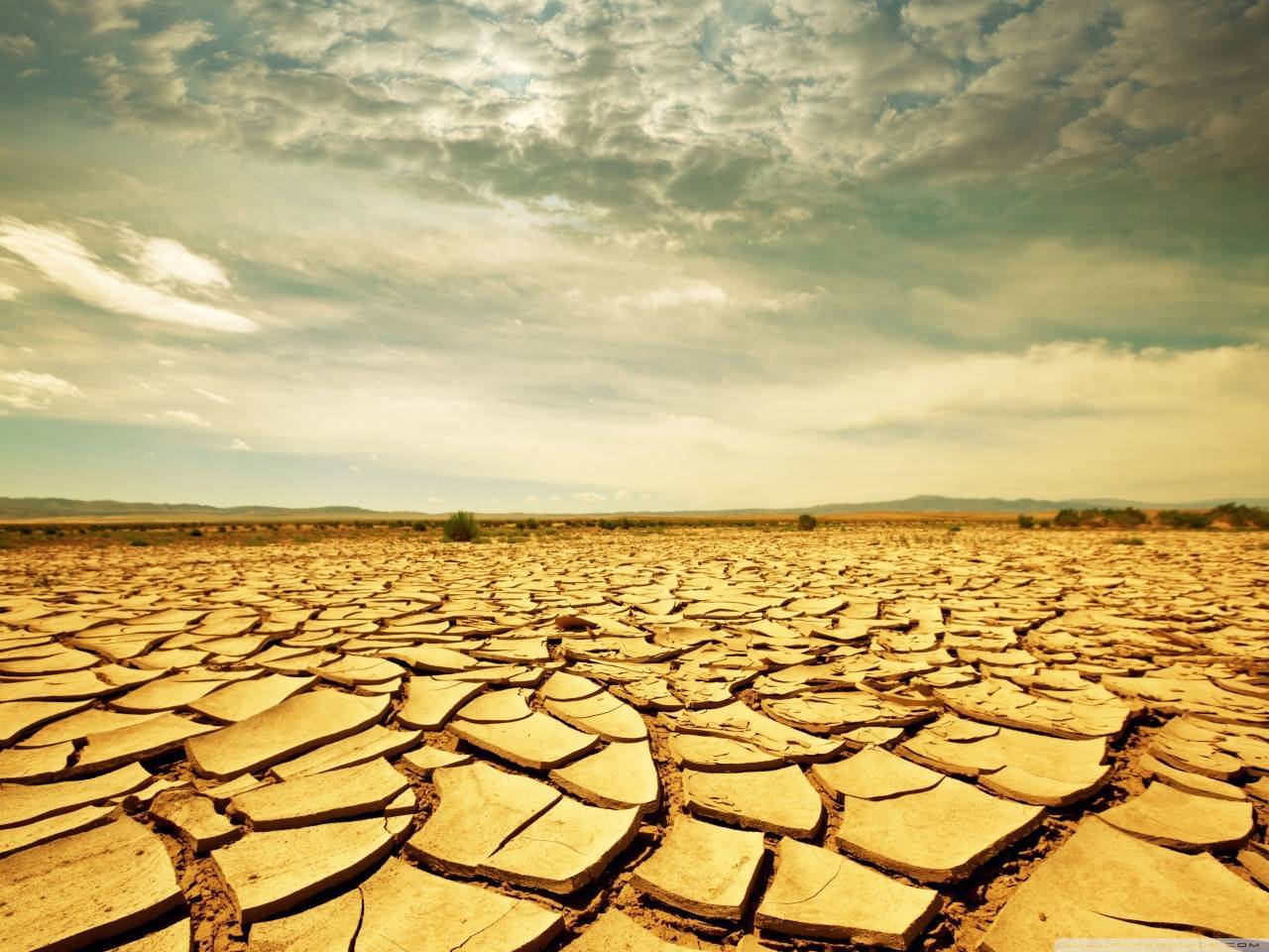 dry_land-wallpaper-1280x960